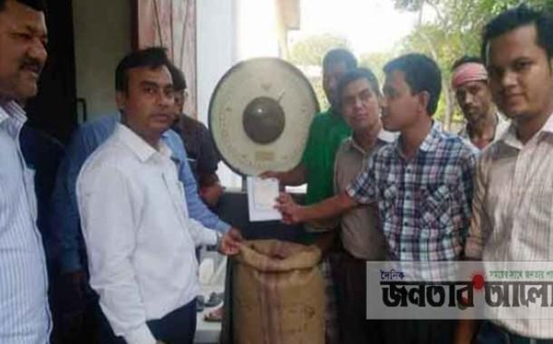 টাঙ্গাইলে সরকার নির্ধারিত মূল্যে ধান সংগ্রহ কার্যক্রম চলছে