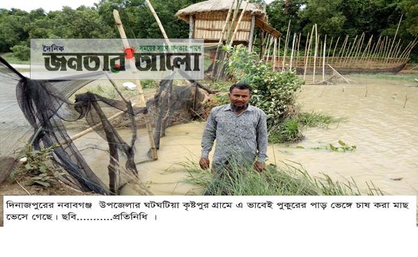 নবাবগঞ্জে বৃষ্টিতে ভেসে গেলো চাষির ১০লাখ টাকার মাছ