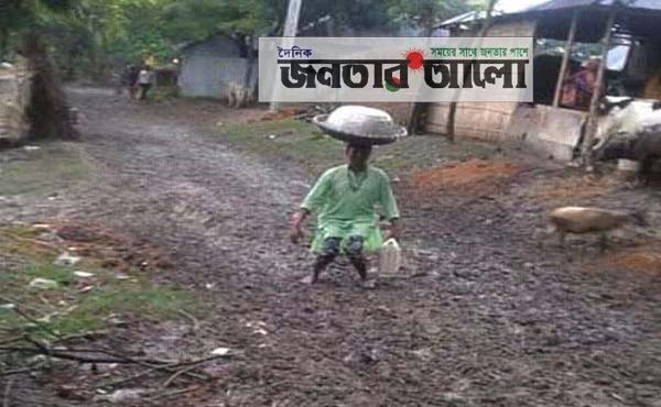 দৌলতপুরে আলিনগর-বাহিরমাদী সড়কের বেহাল দশা