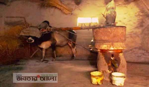 শিবগঞ্জে বিলুপ্ত হয়ে যাচ্ছে ঐতিহ্যবাহী ঘানিশিল্প